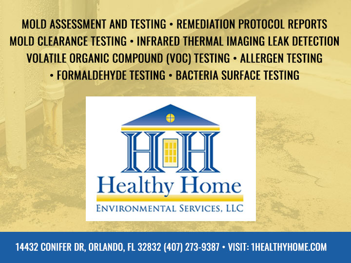 Orlando Mold & Indoor Air Quality Inspection - Healthy Home Environmental  Services - (407) 273-9387